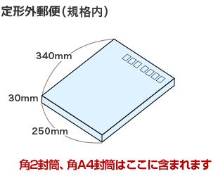 定形外郵便 規格内のサイズ