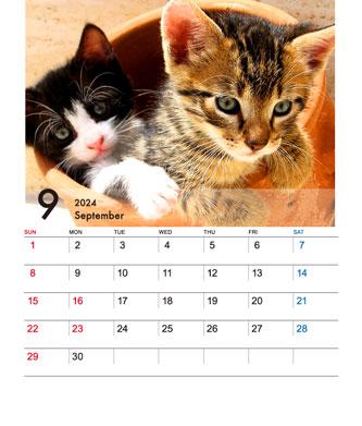 CDサイズ卓上カレンダー(Bタイプ)