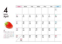 卓上ECOリング綴じカレンダー(13枚セット)日付面