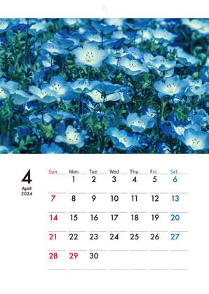 ECO壁掛けカレンダー印刷(タンザック)(13ページ)