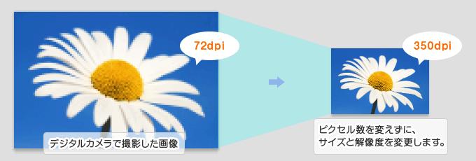 デジタルカメラで撮影した解像度72dpiのデータを、印刷に適した解像度の350dpiに設定します