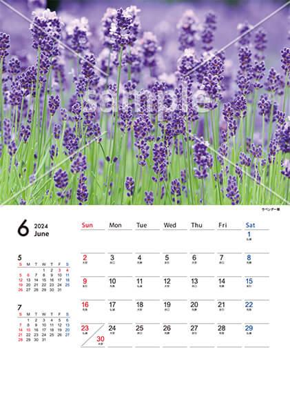 四季の風景 6月