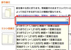 オプションはショッピングカート「オプションの選択・追加項目」で選択してください