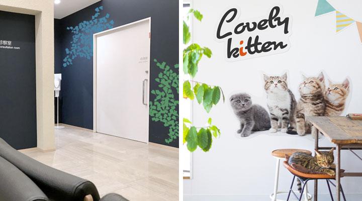 マルチセーフ壁紙は病院やクリニック、ペットのいる部屋などにご使用いただけます