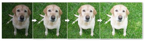 スクリーン効果を繰り返して重ねて、写真を明るくする方法