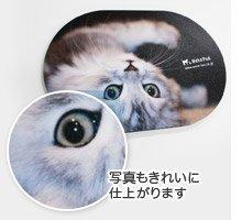 美しい仕上がりの猫の写真のマウスパッド
