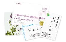 名刺印刷/カード印刷/はがき印刷/ポストカード印刷