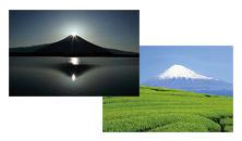 富士の四季の写真
