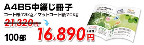 A4B5中綴じ冊子100部16,890円