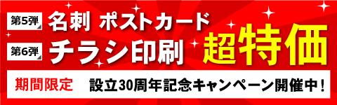 キャンペーン第6弾:チラシの超特価プランが再登場!