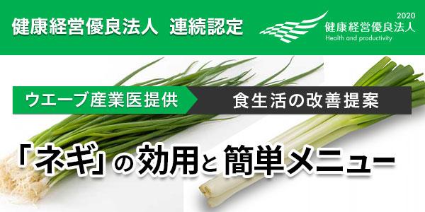 【食生活の改善提案】季節の食材を取り入れましょう!「ネギ」の 効用と簡単メニュー